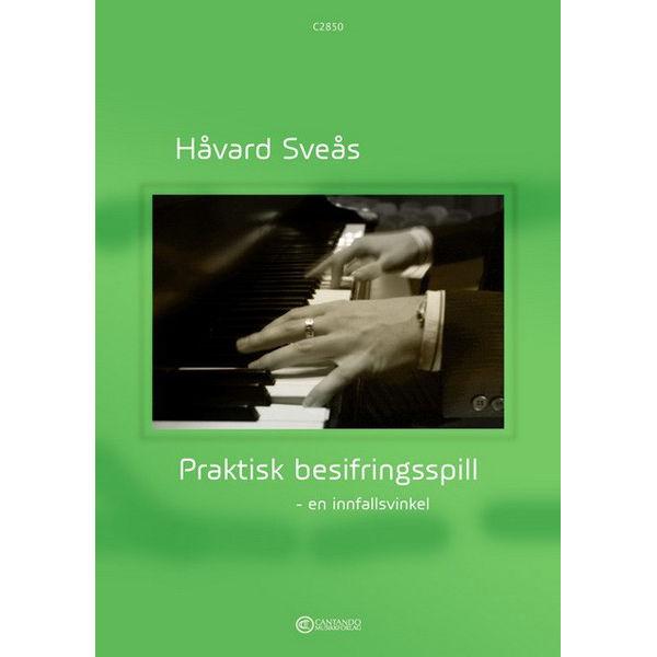 Praktisk besifringsspill - en innfallsvinkel, Håvard Sveås