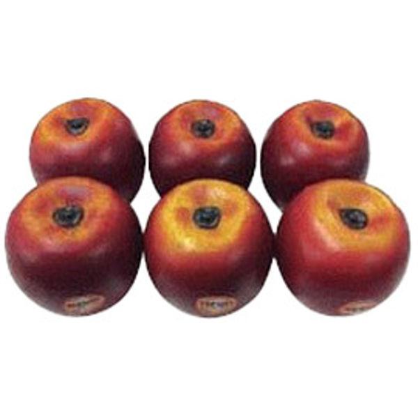 Shaker Remo Fruit SC-APLG-06, Epler, Large, 6 Stk