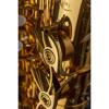 Altsaksofon Selmer Supreme, Dark Gold Lacquered, Outfit